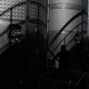 037-gastronomia-vino