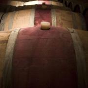 049-gastronomia-vino